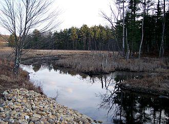 Cranberry River (Massachusetts) - Cranberry River in South Spencer, Massachusetts