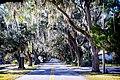 Crystal Street in Crystal River, Florida.jpg