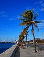 Cuba 2013-01-25 (8532681633).jpg