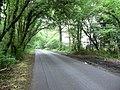 Cufaude Lane - geograph.org.uk - 820728.jpg