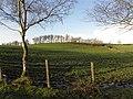 Curr Townland - geograph.org.uk - 1596116.jpg