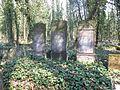 Czestochowa cmentarz zydowski 11.jpg