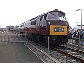 D1015 Western Champion at Etches Park open day 01.JPG