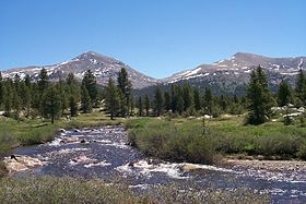 Dana Meadows Yosemite.jpg