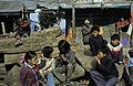 Darjeeling1980-026.jpg