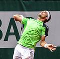 David Ferrer - Roland-Garros 2013 - 013.jpg