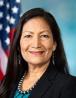 Deb Haaland, official portrait, 116th Congress (cropped).jpg