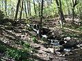 Delaware Water Gap National Recreation Area - Pennsylvania (5677817365).jpg