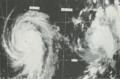 Deniseeleanor1975.png