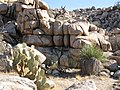 Desert Queen Ranch (Keys Ranch) (12489657633).jpg