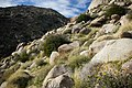 Desert boulders (13496881044).jpg