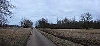 Dessau, Elbe, natural monument Schilflachenhau.jpg