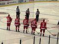 Detroit Red Wings, Joe Louis Arena, Detroit, Michigan (21080382294).jpg