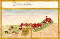 Dettenhausen, Andreas Kieser.png