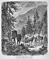 Die Gartenlaube (1873) b 207.jpg