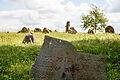 Dieveniskes Jewish cemetery.jpg