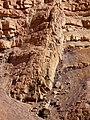 Dike, Ardon Creek, Ramon Makhtesh, Negev, Israel דייק, נחל ארדון, מכתש רמון, הר הנגב - panoramio (1).jpg