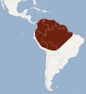 Distribution of Lonchophylla thomasi.png