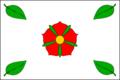 Dolni Bukovsko CZ flag.png