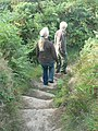 Down the steps on Tregonning Hill - geograph.org.uk - 233897.jpg