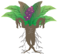 Dragora logo.png