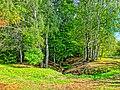 Dzerzhinsky District, Kaluga Oblast, Russia - panoramio (92).jpg
