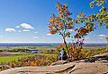 Eardley Escarpment, Gatineau Park (15518754348).jpg