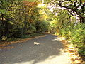 Eastham Country Park, Wirral - DSC03479.JPG