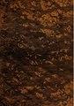 El arcano de la quina. Discurso que contiene la parte médica de las cuatro especies de quinas oficinales, sus virtudes eminentes y su legítima preparación. Obra póstuma ... (IA b29320707).pdf