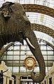 Elephant Parkie at Orsay Museum in Paris.jpg