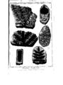 Encyclopedie volume 5-179.png