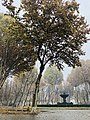 English Park of Yerevan.jpg