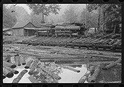 Erwin-millpond-sawmill-wv1