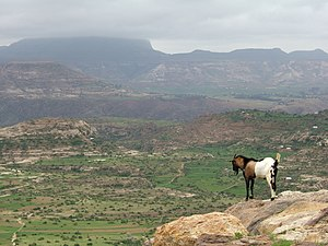 Ethiopian Highlands with Ras Dashan in the bac...