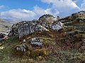 Exposed bedrock covered in lichen and moss, on the slopes of Moel-y-Ci, with the Carneddau in the background.jpg