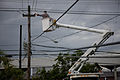 FEMA - 39177 - Electric company repairing a power pole in Puerto Rico.jpg