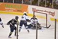 Falcons @ Ice Dogs (404195158).jpg