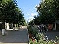 Falticeni - Ansamblul urban Strada Republicii.jpg