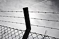 Fence (5994901274).jpg