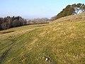 Field below the Hope - geograph.org.uk - 1098632.jpg