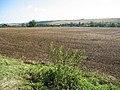 Field near Little Ponton - geograph.org.uk - 1760154.jpg