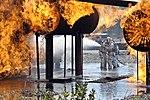 Field of flames (9191496847).jpg