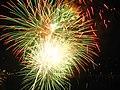 Fireworks, Niagara Falls (460406) (9449420786).jpg