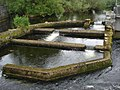 Fish-ladder-River-Fergus-Ennis.jpg