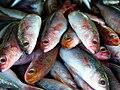 Fish market Batac City. (15416371904).jpg