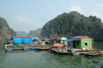 Fishing village - An unconventional floating fishing village in Halong Bay, Vietnam
