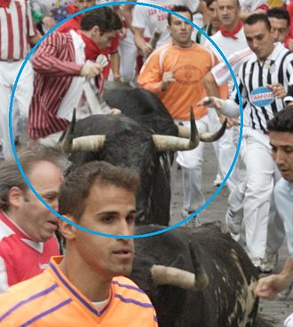 Alexander Fiske-Harrison - Fiske-Harrison, circled, running among the bulls of Torrestrella on calle Estafeta in Pamplona