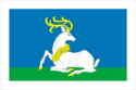 Flag of Odintsovo