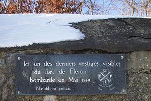 Fort de Fléron - Image: Fleron Fort detall