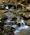 Flickr - Nicholas T - Apollo County Park (4).jpg